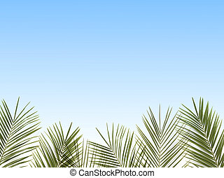 palm leaves on a blue background.