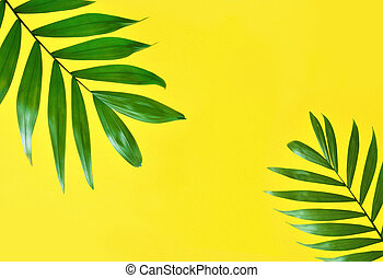 Palm Leaves On Beige Background Green Palm Leaves On A Beige Background Canstock Exotic yellow and gold iguanas relaxing on timber. beige background green palm leaves on
