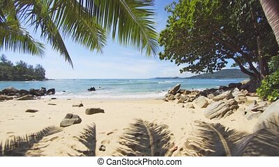 Palm Leaves over a Pristine Tropical Beach in Thailand -...