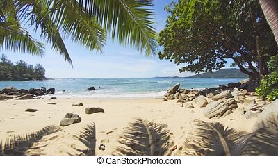 Palm Leaves over a Pristine Tropical Beach in Thailand - ...
