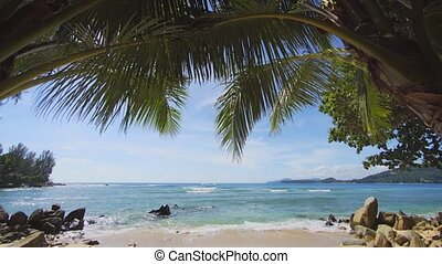 Palm Leaves over a Pristine Tropical Beach in Thailand, with...