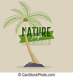 Palm nature jungle