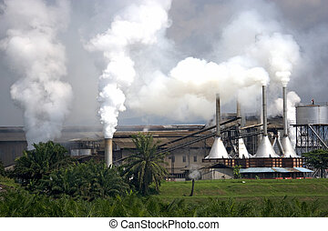 Palm Oil Factory - Image of a palm oil factory with an oil...