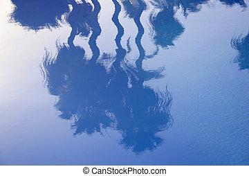 palm, reflectie, vredig