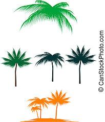 palm, set, boompje