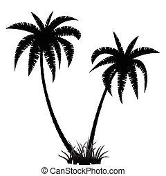 palm, silhouette, bomen