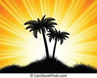 palm, silhouettes, träd