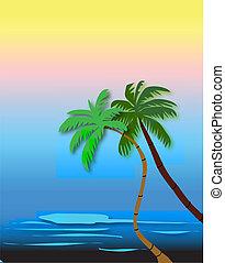 palm, stranden, träd