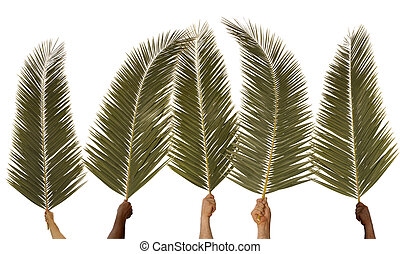 Five hands waving palm branches against a white background