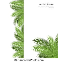 palm template - Palm leaves isolated on white background. ...