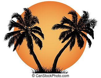 Palm tree against summer sunset
