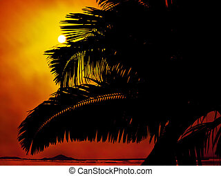 Palm tree at sunset in the beach