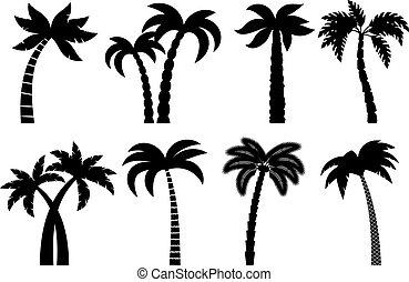 Palm tree black set