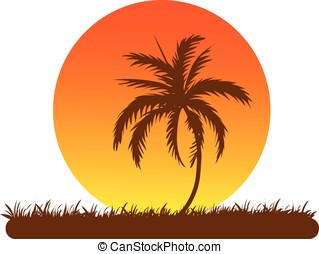 palm-tree - vector,silhouette of a palm-tree against large...