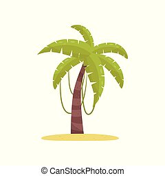 Palm tree, element of tropical jungle forest landscape vector Illustration on a white background