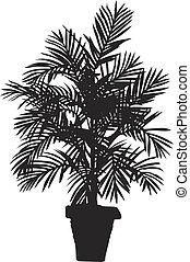 Palm tree silhouetter. Vector illustration