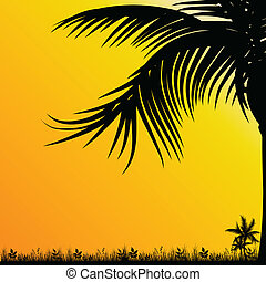 palm tree for background black illustration