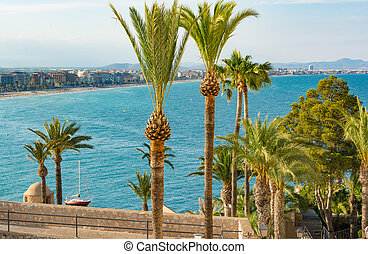 Palm tree gardens in Peniscola castle. Castellon province. Spain.