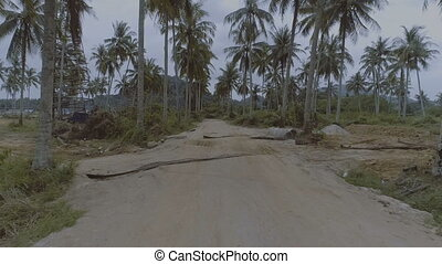 Palm tree gravel road - Smooth shot following rural gravel...