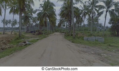 Palm tree gravel road - Smooth shot following rural gravel...