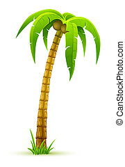 palm tree - illustration, isolated on white background