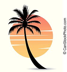 palm tree image with sun