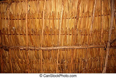 Palm tree leaves in sunroof palapa hut roof - Palm tree...