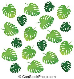 palm tree leaves, Monstera tropical plant background