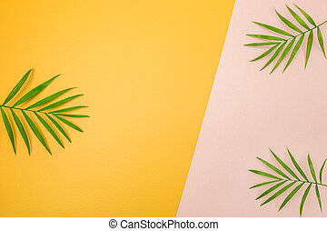 Palm tree leaves on pink and yellow background