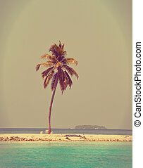 Palm tree on a sandy beach at the cyan sea. Maldives. ,with a retro effect