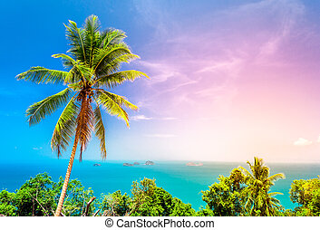 Palm tree on the background of a beautiful seascape
