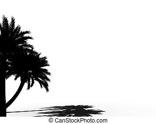 palm tree outline silhouette