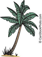Palm tree - palm tree