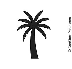 palm tree plant nature season icon. Vector graphic