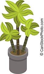 Palm tree pot icon, isometric style