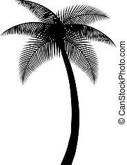 palm tree silhouette vector illustration