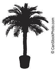 Palm tree silhouetter. Vector illustration