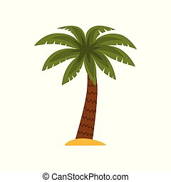 Palm tree, tropical plant vector Illustration on a white background