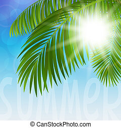 Palm tree - Vector illustration branches of palm trees and...