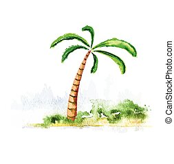 Palm tree, watercolour vector illustration - Palm tree,...