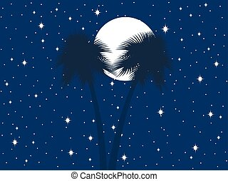 Palm trees against the background of the moon and the starry sky. Vector illustration