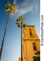 Palm trees and building in San Diego, California.