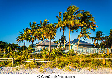 Palm trees and building on the beach in Fort Myers Beach, Florid