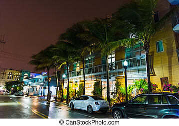 Palm trees and colorful buildings in Miami Beach at night