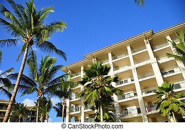 Palm trees on Maui along the Kaanapli beach front walking path with luxury hotel and condos in view.