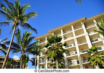 Palm trees and condos, Maui - Palm trees on Maui along the...