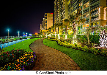 Palm trees and highrise hotels along a walkway at night, in...