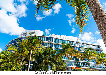 Palm trees and modern buildings in beautiful Miami Beach
