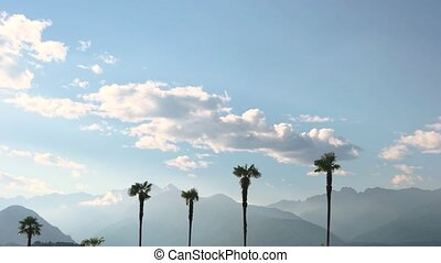 Palm trees and mountains, sky. Scenic view of nature. Cheap...