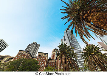 Palm trees and skyscrapers in downtown Los Angeles